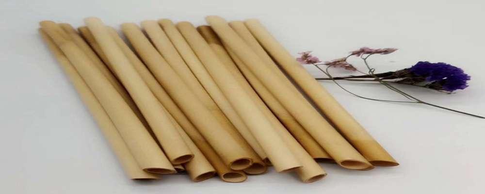 Paille en roseau VS paille en bambou