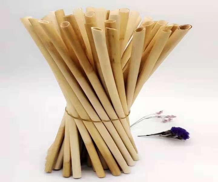 Schilfstrohhalme VS Bambusstrohhalme
